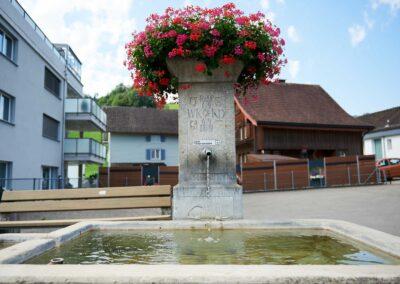 Brunnen Dorf Mosnang