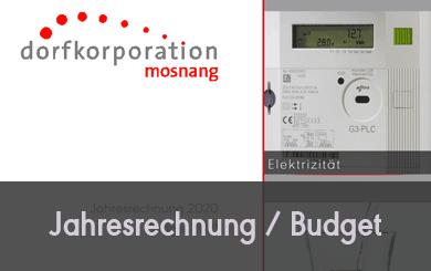 Jahresrechnung 2020 / Budget 2021
